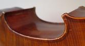 NZSM - Cellophonia